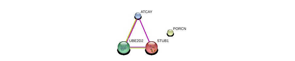 http://string-db.org/version_10/api/image/networkList?limit=0&targetmode=proteins&caller_identity=gene_cards&network_flavor=evidence&identifiers=9606.ENSP00000390941%0d%0a9606.ENSP00000322304%0d%0a9606.ENSP00000381717%0d%0a9606.ENSP00000219548%0d%0a