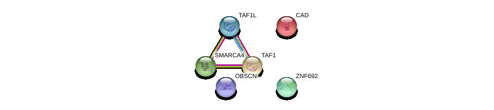 http://string-db.org/version_10/api/image/networkList?limit=0&targetmode=proteins&caller_identity=gene_cards&network_flavor=evidence&identifiers=9606.ENSP00000391200%0d%0a9606.ENSP00000264705%0d%0a9606.ENSP00000455507%0d%0a9606.ENSP00000276072%0d%0a9606.ENSP00000418379%0d%0a9606.ENSP00000350720%0d%0a