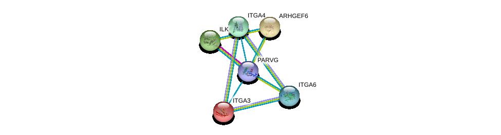 http://string-db.org/version_10/api/image/networkList?limit=0&targetmode=proteins&caller_identity=gene_cards&network_flavor=evidence&identifiers=9606.ENSP00000391453%0d%0a9606.ENSP00000299421%0d%0a9606.ENSP00000250617%0d%0a9606.ENSP00000007722%0d%0a9606.ENSP00000380227%0d%0a9606.ENSP00000386896%0d%0a