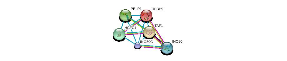 http://string-db.org/version_10/api/image/networkList?limit=0&targetmode=proteins&caller_identity=gene_cards&network_flavor=evidence&identifiers=9606.ENSP00000391457%0d%0a9606.ENSP00000355205%0d%0a9606.ENSP00000264515%0d%0a9606.ENSP00000276072%0d%0a9606.ENSP00000301396%0d%0a9606.ENSP00000309555%0d%0a