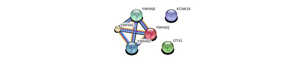 http://string-db.org/version_10/api/image/networkList?limit=0&targetmode=proteins&caller_identity=gene_cards&network_flavor=evidence&identifiers=9606.ENSP00000391498%0d%0a9606.ENSP00000282549%0d%0a9606.ENSP00000238081%0d%0a9606.ENSP00000264335%0d%0a9606.ENSP00000300161%0d%0a9606.ENSP00000306330%0d%0a