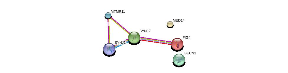 http://string-db.org/version_10/api/image/networkList?limit=0&targetmode=proteins&caller_identity=gene_cards&network_flavor=evidence&identifiers=9606.ENSP00000391668%0d%0a9606.ENSP00000347792%0d%0a9606.ENSP00000409667%0d%0a9606.ENSP00000355231%0d%0a9606.ENSP00000323720%0d%0a9606.ENSP00000230124%0d%0a