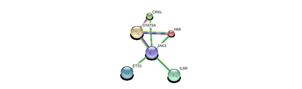http://string-db.org/version_10/api/image/networkList?limit=0&targetmode=proteins&caller_identity=gene_cards&network_flavor=evidence&identifiers=9606.ENSP00000391676%0d%0a9606.ENSP00000341208%0d%0a9606.ENSP00000376436%0d%0a9606.ENSP00000243346%0d%0a9606.ENSP00000357470%0d%0a9606.ENSP00000346300%0d%0a