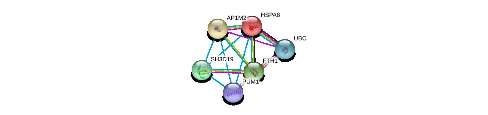 http://string-db.org/version_10/api/image/networkList?limit=0&targetmode=proteins&caller_identity=gene_cards&network_flavor=evidence&identifiers=9606.ENSP00000391723%0d%0a9606.ENSP00000344818%0d%0a9606.ENSP00000227378%0d%0a9606.ENSP00000250244%0d%0a9606.ENSP00000273550%0d%0a9606.ENSP00000302913%0d%0a