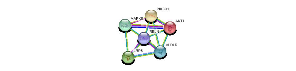 http://string-db.org/version_10/api/image/networkList?limit=0&targetmode=proteins&caller_identity=gene_cards&network_flavor=evidence&identifiers=9606.ENSP00000392423%0d%0a9606.ENSP00000303634%0d%0a9606.ENSP00000371532%0d%0a9606.ENSP00000353483%0d%0a9606.ENSP00000274335%0d%0a9606.ENSP00000270202%0d%0a