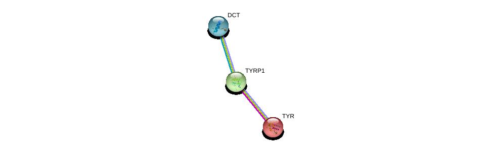 http://string-db.org/version_10/api/image/networkList?limit=0&targetmode=proteins&caller_identity=gene_cards&network_flavor=evidence&identifiers=9606.ENSP00000392762%0d%0a9606.ENSP00000373570%0d%0a9606.ENSP00000263321%0d%0a