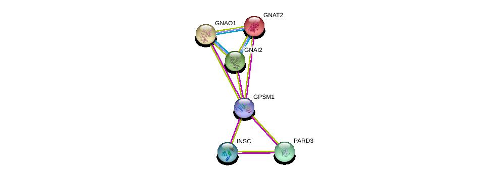 http://string-db.org/version_10/api/image/networkList?limit=0&targetmode=proteins&caller_identity=gene_cards&network_flavor=evidence&identifiers=9606.ENSP00000392828%0d%0a9606.ENSP00000368872%0d%0a9606.ENSP00000363921%0d%0a9606.ENSP00000251337%0d%0a9606.ENSP00000312999%0d%0a9606.ENSP00000262493%0d%0a