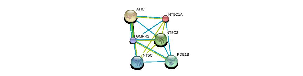 http://string-db.org/version_10/api/image/networkList?limit=0&targetmode=proteins&caller_identity=gene_cards&network_flavor=evidence&identifiers=9606.ENSP00000392859%0d%0a9606.ENSP00000235628%0d%0a9606.ENSP00000236959%0d%0a9606.ENSP00000242210%0d%0a9606.ENSP00000243052%0d%0a9606.ENSP00000245552%0d%0a