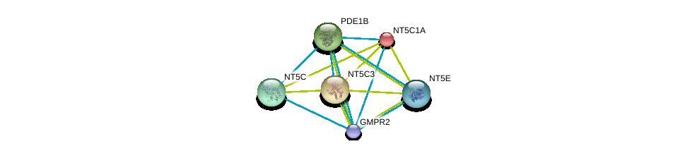 http://string-db.org/version_10/api/image/networkList?limit=0&targetmode=proteins&caller_identity=gene_cards&network_flavor=evidence&identifiers=9606.ENSP00000392859%0d%0a9606.ENSP00000235628%0d%0a9606.ENSP00000242210%0d%0a9606.ENSP00000243052%0d%0a9606.ENSP00000245552%0d%0a9606.ENSP00000257770%0d%0a