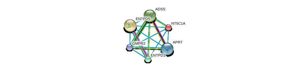 http://string-db.org/version_10/api/image/networkList?limit=0&targetmode=proteins&caller_identity=gene_cards&network_flavor=evidence&identifiers=9606.ENSP00000392859%0d%0a9606.ENSP00000235628%0d%0a9606.ENSP00000360250%0d%0a9606.ENSP00000355493%0d%0a9606.ENSP00000367615%0d%0a9606.ENSP00000335246%0d%0a