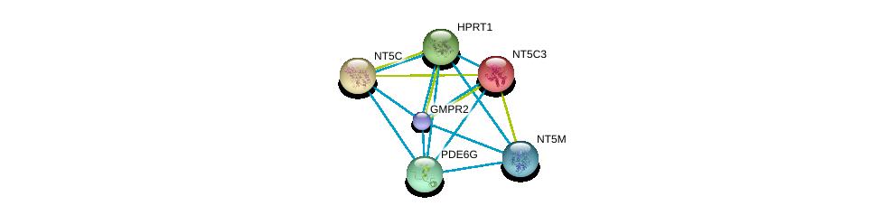 http://string-db.org/version_10/api/image/networkList?limit=0&targetmode=proteins&caller_identity=gene_cards&network_flavor=evidence&identifiers=9606.ENSP00000392859%0d%0a9606.ENSP00000373674%0d%0a9606.ENSP00000328412%0d%0a9606.ENSP00000242210%0d%0a9606.ENSP00000298556%0d%0a9606.ENSP00000245552%0d%0a