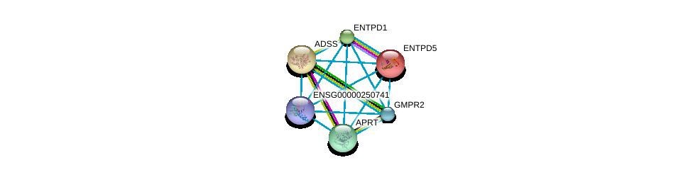 http://string-db.org/version_10/api/image/networkList?limit=0&targetmode=proteins&caller_identity=gene_cards&network_flavor=evidence&identifiers=9606.ENSP00000392859%0d%0a9606.ENSP00000433415%0d%0a9606.ENSP00000335246%0d%0a9606.ENSP00000367615%0d%0a9606.ENSP00000355493%0d%0a9606.ENSP00000360250%0d%0a
