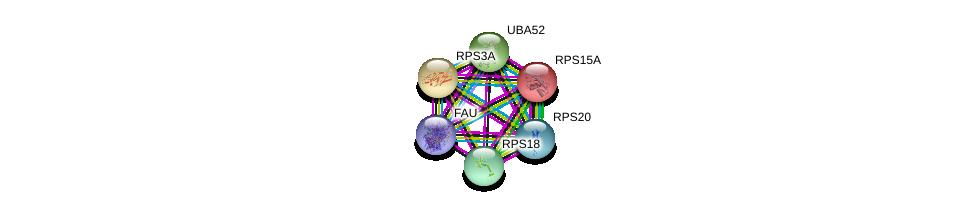 http://string-db.org/version_10/api/image/networkList?limit=0&targetmode=proteins&caller_identity=gene_cards&network_flavor=evidence&identifiers=9606.ENSP00000393241%0d%0a9606.ENSP00000431822%0d%0a9606.ENSP00000388107%0d%0a9606.ENSP00000429374%0d%0a9606.ENSP00000318646%0d%0a9606.ENSP00000346050%0d%0a