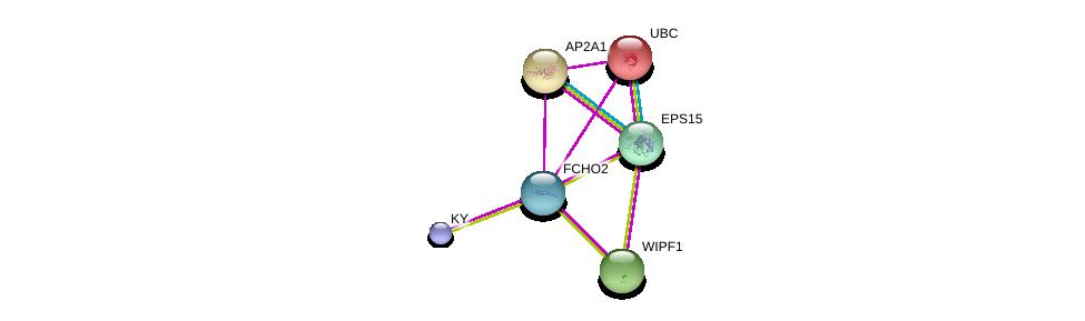 http://string-db.org/version_10/api/image/networkList?limit=0&targetmode=proteins&caller_identity=gene_cards&network_flavor=evidence&identifiers=9606.ENSP00000393776%0d%0a9606.ENSP00000397598%0d%0a9606.ENSP00000360798%0d%0a9606.ENSP00000344818%0d%0a9606.ENSP00000351926%0d%0a9606.ENSP00000352802%0d%0a