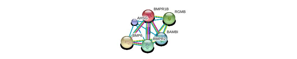 http://string-db.org/version_10/api/image/networkList?limit=0&targetmode=proteins&caller_identity=gene_cards&network_flavor=evidence&identifiers=9606.ENSP00000393887%0d%0a9606.ENSP00000264568%0d%0a9606.ENSP00000283147%0d%0a9606.ENSP00000308219%0d%0a9606.ENSP00000363708%0d%0a9606.ENSP00000364683%0d%0a