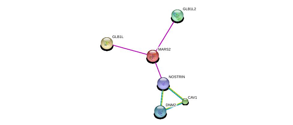 http://string-db.org/version_10/api/image/networkList?limit=0&targetmode=proteins&caller_identity=gene_cards&network_flavor=evidence&identifiers=9606.ENSP00000394051%0d%0a9606.ENSP00000282276%0d%0a9606.ENSP00000339191%0d%0a9606.ENSP00000347890%0d%0a9606.ENSP00000344659%0d%0a9606.ENSP00000295759%0d%0a