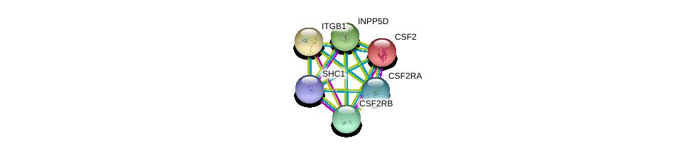 http://string-db.org/version_10/api/image/networkList?limit=0&targetmode=proteins&caller_identity=gene_cards&network_flavor=evidence&identifiers=9606.ENSP00000394227%0d%0a9606.ENSP00000296871%0d%0a9606.ENSP00000384053%0d%0a9606.ENSP00000303351%0d%0a9606.ENSP00000352575%0d%0a9606.ENSP00000401303%0d%0a