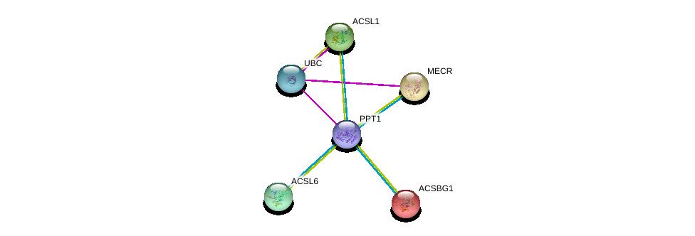 http://string-db.org/version_10/api/image/networkList?limit=0&targetmode=proteins&caller_identity=gene_cards&network_flavor=evidence&identifiers=9606.ENSP00000394863%0d%0a9606.ENSP00000263702%0d%0a9606.ENSP00000344818%0d%0a9606.ENSP00000296869%0d%0a9606.ENSP00000281455%0d%0a9606.ENSP00000258873%0d%0a
