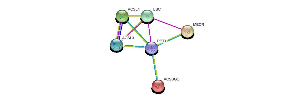 http://string-db.org/version_10/api/image/networkList?limit=0&targetmode=proteins&caller_identity=gene_cards&network_flavor=evidence&identifiers=9606.ENSP00000394863%0d%0a9606.ENSP00000263702%0d%0a9606.ENSP00000344818%0d%0a9606.ENSP00000350012%0d%0a9606.ENSP00000339787%0d%0a9606.ENSP00000258873%0d%0a