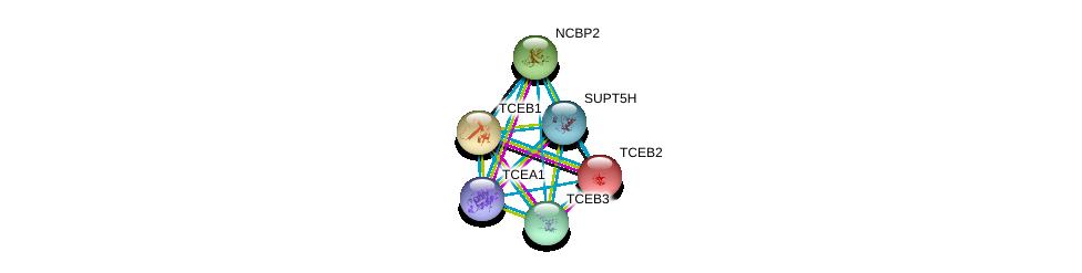 http://string-db.org/version_10/api/image/networkList?limit=0&targetmode=proteins&caller_identity=gene_cards&network_flavor=evidence&identifiers=9606.ENSP00000395574%0d%0a9606.ENSP00000284811%0d%0a9606.ENSP00000262306%0d%0a9606.ENSP00000326806%0d%0a9606.ENSP00000428426%0d%0a9606.ENSP00000404029%0d%0a