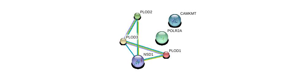 http://string-db.org/version_10/api/image/networkList?limit=0&targetmode=proteins&caller_identity=gene_cards&network_flavor=evidence&identifiers=9606.ENSP00000395929%0d%0a9606.ENSP00000223127%0d%0a9606.ENSP00000196061%0d%0a9606.ENSP00000282903%0d%0a9606.ENSP00000367755%0d%0a9606.ENSP00000314949%0d%0a