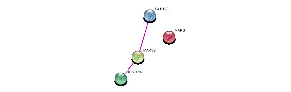 http://string-db.org/version_10/api/image/networkList?limit=0&targetmode=proteins&caller_identity=gene_cards&network_flavor=evidence&identifiers=9606.ENSP00000396615%0d%0a9606.ENSP00000282276%0d%0a9606.ENSP00000394051%0d%0a9606.ENSP00000262027%0d%0a