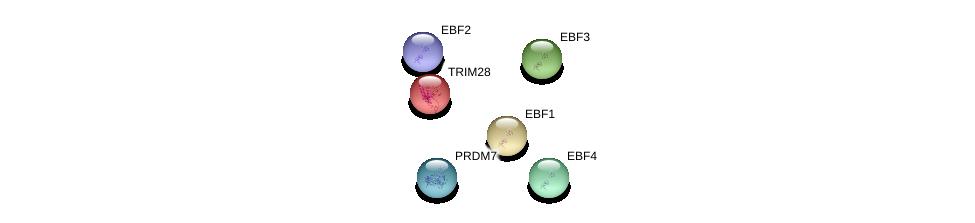 http://string-db.org/version_10/api/image/networkList?limit=0&targetmode=proteins&caller_identity=gene_cards&network_flavor=evidence&identifiers=9606.ENSP00000396732%0d%0a9606.ENSP00000253024%0d%0a9606.ENSP00000430241%0d%0a9606.ENSP00000370022%0d%0a9606.ENSP00000322898%0d%0a9606.ENSP00000357637%0d%0a