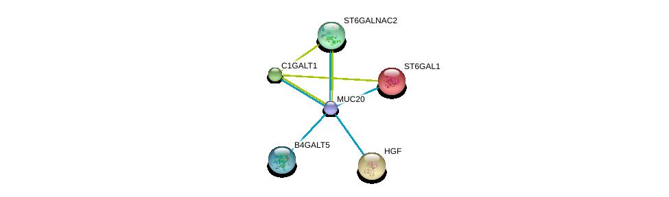 http://string-db.org/version_10/api/image/networkList?limit=0&targetmode=proteins&caller_identity=gene_cards&network_flavor=evidence&identifiers=9606.ENSP00000396774%0d%0a9606.ENSP00000223122%0d%0a9606.ENSP00000360776%0d%0a9606.ENSP00000169298%0d%0a9606.ENSP00000222390%0d%0a9606.ENSP00000225276%0d%0a