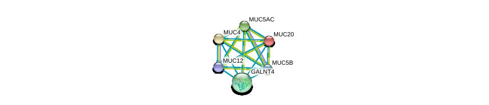 http://string-db.org/version_10/api/image/networkList?limit=0&targetmode=proteins&caller_identity=gene_cards&network_flavor=evidence&identifiers=9606.ENSP00000396774%0d%0a9606.ENSP00000436604%0d%0a9606.ENSP00000436812%0d%0a9606.ENSP00000441929%0d%0a9606.ENSP00000435591%0d%0a9606.ENSP00000417498%0d%0a