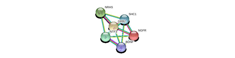 http://string-db.org/version_10/api/image/networkList?limit=0&targetmode=proteins&caller_identity=gene_cards&network_flavor=evidence&identifiers=9606.ENSP00000397297%0d%0a9606.ENSP00000414303%0d%0a9606.ENSP00000172229%0d%0a9606.ENSP00000358548%0d%0a9606.ENSP00000339007%0d%0a9606.ENSP00000401303%0d%0a