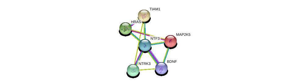 http://string-db.org/version_10/api/image/networkList?limit=0&targetmode=proteins&caller_identity=gene_cards&network_flavor=evidence&identifiers=9606.ENSP00000397297%0d%0a9606.ENSP00000414303%0d%0a9606.ENSP00000354207%0d%0a9606.ENSP00000178640%0d%0a9606.ENSP00000286827%0d%0a9606.ENSP00000309845%0d%0a