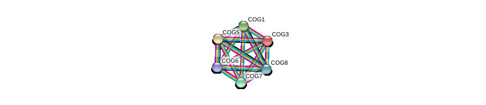 http://string-db.org/version_10/api/image/networkList?limit=0&targetmode=proteins&caller_identity=gene_cards&network_flavor=evidence&identifiers=9606.ENSP00000397441%0d%0a9606.ENSP00000258654%0d%0a9606.ENSP00000305459%0d%0a9606.ENSP00000299886%0d%0a9606.ENSP00000297135%0d%0a9606.ENSP00000305442%0d%0a
