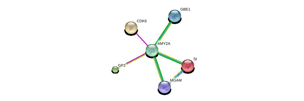 http://string-db.org/version_10/api/image/networkList?limit=0&targetmode=proteins&caller_identity=gene_cards&network_flavor=evidence&identifiers=9606.ENSP00000397582%0d%0a9606.ENSP00000410833%0d%0a9606.ENSP00000264382%0d%0a9606.ENSP00000447378%0d%0a9606.ENSP00000370767%0d%0a9606.ENSP00000265734%0d%0a