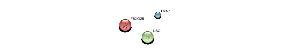 http://string-db.org/version_10/api/image/networkList?limit=0&targetmode=proteins&caller_identity=gene_cards&network_flavor=evidence&identifiers=9606.ENSP00000397843%0d%0a9606.ENSP00000276326%0d%0a9606.ENSP00000344818%0d%0a