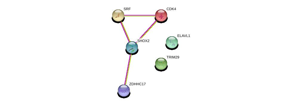 http://string-db.org/version_10/api/image/networkList?limit=0&targetmode=proteins&caller_identity=gene_cards&network_flavor=evidence&identifiers=9606.ENSP00000398704%0d%0a9606.ENSP00000343129%0d%0a9606.ENSP00000257904%0d%0a9606.ENSP00000403397%0d%0a9606.ENSP00000385269%0d%0a9606.ENSP00000265354%0d%0a