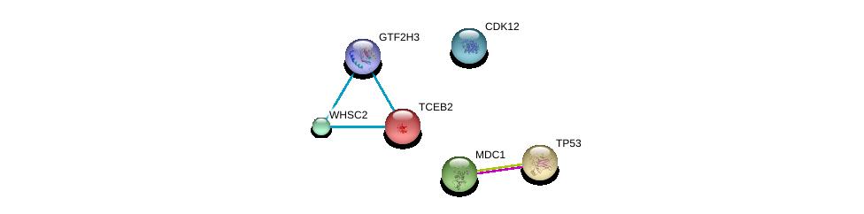 http://string-db.org/version_10/api/image/networkList?limit=0&targetmode=proteins&caller_identity=gene_cards&network_flavor=evidence&identifiers=9606.ENSP00000398880%0d%0a9606.ENSP00000365588%0d%0a9606.ENSP00000269305%0d%0a9606.ENSP00000445162%0d%0a9606.ENSP00000262306%0d%0a9606.ENSP00000372335%0d%0a