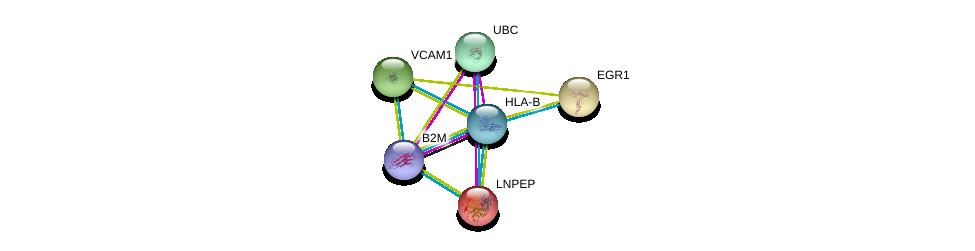 http://string-db.org/version_10/api/image/networkList?limit=0&targetmode=proteins&caller_identity=gene_cards&network_flavor=evidence&identifiers=9606.ENSP00000399168%0d%0a9606.ENSP00000452780%0d%0a9606.ENSP00000344818%0d%0a9606.ENSP00000231368%0d%0a9606.ENSP00000239938%0d%0a9606.ENSP00000294728%0d%0a