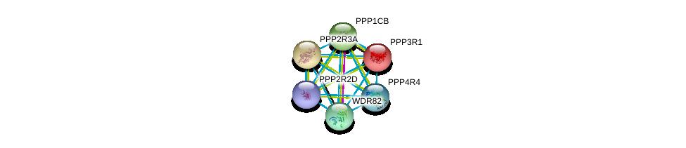 http://string-db.org/version_10/api/image/networkList?limit=0&targetmode=proteins&caller_identity=gene_cards&network_flavor=evidence&identifiers=9606.ENSP00000399970%0d%0a9606.ENSP00000234310%0d%0a9606.ENSP00000296122%0d%0a9606.ENSP00000296490%0d%0a9606.ENSP00000305924%0d%0a9606.ENSP00000264977%0d%0a