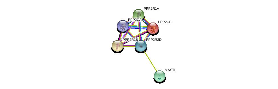 http://string-db.org/version_10/api/image/networkList?limit=0&targetmode=proteins&caller_identity=gene_cards&network_flavor=evidence&identifiers=9606.ENSP00000399970%0d%0a9606.ENSP00000324804%0d%0a9606.ENSP00000311344%0d%0a9606.ENSP00000365107%0d%0a9606.ENSP00000221138%0d%0a9606.ENSP00000418447%0d%0a
