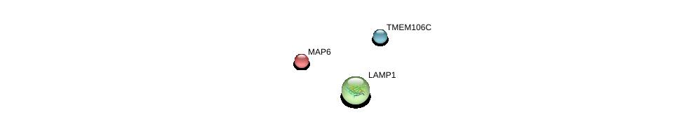 http://string-db.org/version_10/api/image/networkList?limit=0&targetmode=proteins&caller_identity=gene_cards&network_flavor=evidence&identifiers=9606.ENSP00000400471%0d%0a9606.ENSP00000333298%0d%0a9606.ENSP00000307093%0d%0a