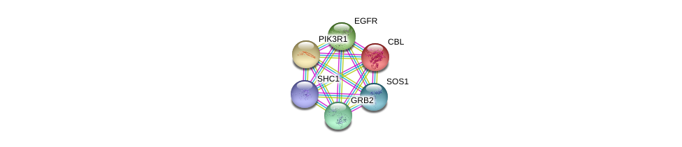 http://string-db.org/version_10/api/image/networkList?limit=0&targetmode=proteins&caller_identity=gene_cards&network_flavor=evidence&identifiers=9606.ENSP00000401303%0d%0a9606.ENSP00000339007%0d%0a9606.ENSP00000275493%0d%0a9606.ENSP00000264033%0d%0a9606.ENSP00000274335%0d%0a9606.ENSP00000384675%0d%0a