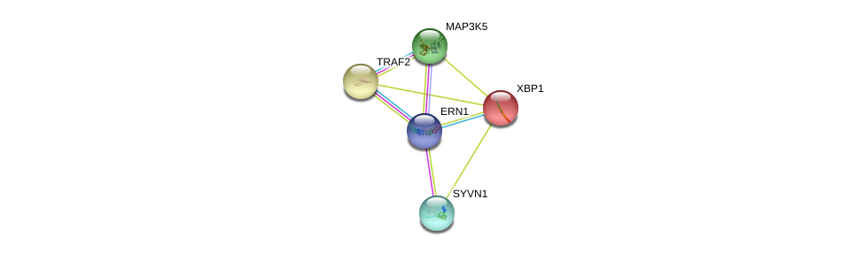 http://string-db.org/version_10/api/image/networkList?limit=0&targetmode=proteins&caller_identity=gene_cards&network_flavor=evidence&identifiers=9606.ENSP00000401445%0d%0a9606.ENSP00000247668%0d%0a9606.ENSP00000366395%0d%0a9606.ENSP00000366395%0d%0a9606.ENSP00000216037%0d%0a9606.ENSP00000351908%0d%0a