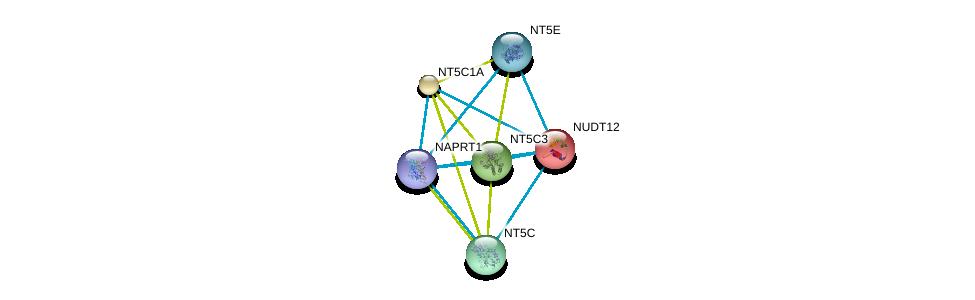 http://string-db.org/version_10/api/image/networkList?limit=0&targetmode=proteins&caller_identity=gene_cards&network_flavor=evidence&identifiers=9606.ENSP00000401508%0d%0a9606.ENSP00000230792%0d%0a9606.ENSP00000235628%0d%0a9606.ENSP00000242210%0d%0a9606.ENSP00000245552%0d%0a9606.ENSP00000257770%0d%0a