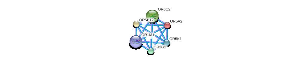 http://string-db.org/version_10/api/image/networkList?limit=0&targetmode=proteins&caller_identity=gene_cards&network_flavor=evidence&identifiers=9606.ENSP00000401966%0d%0a9606.ENSP00000306657%0d%0a9606.ENSP00000326349%0d%0a9606.ENSP00000323606%0d%0a9606.ENSP00000303834%0d%0a9606.ENSP00000373193%0d%0a