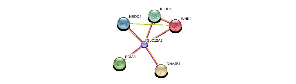 http://string-db.org/version_10/api/image/networkList?limit=0&targetmode=proteins&caller_identity=gene_cards&network_flavor=evidence&identifiers=9606.ENSP00000402152%0d%0a9606.ENSP00000300289%0d%0a9606.ENSP00000345530%0d%0a9606.ENSP00000312397%0d%0a9606.ENSP00000246914%0d%0a9606.ENSP00000254322%0d%0a