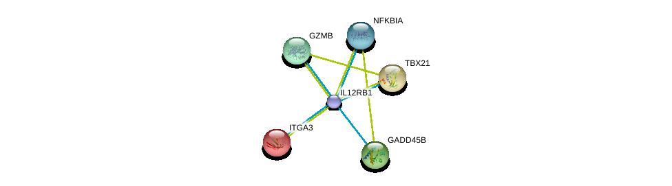http://string-db.org/version_10/api/image/networkList?limit=0&targetmode=proteins&caller_identity=gene_cards&network_flavor=evidence&identifiers=9606.ENSP00000403103%0d%0a9606.ENSP00000007722%0d%0a9606.ENSP00000177694%0d%0a9606.ENSP00000215631%0d%0a9606.ENSP00000216341%0d%0a9606.ENSP00000216797%0d%0a