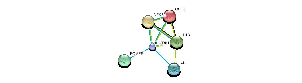http://string-db.org/version_10/api/image/networkList?limit=0&targetmode=proteins&caller_identity=gene_cards&network_flavor=evidence&identifiers=9606.ENSP00000403103%0d%0a9606.ENSP00000375795%0d%0a9606.ENSP00000263341%0d%0a9606.ENSP00000225245%0d%0a9606.ENSP00000295743%0d%0a9606.ENSP00000226574%0d%0a