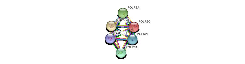 http://string-db.org/version_10/api/image/networkList?limit=0&targetmode=proteins&caller_identity=gene_cards&network_flavor=evidence&identifiers=9606.ENSP00000404029%0d%0a9606.ENSP00000314949%0d%0a9606.ENSP00000219252%0d%0a9606.ENSP00000225504%0d%0a9606.ENSP00000403852%0d%0a9606.ENSP00000361446%0d%0a