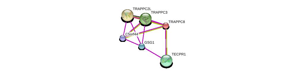 http://string-db.org/version_10/api/image/networkList?limit=0&targetmode=proteins&caller_identity=gene_cards&network_flavor=evidence&identifiers=9606.ENSP00000405032%0d%0a9606.ENSP00000404923%0d%0a9606.ENSP00000301021%0d%0a9606.ENSP00000362261%0d%0a9606.ENSP00000409231%0d%0a9606.ENSP00000283351%0d%0a