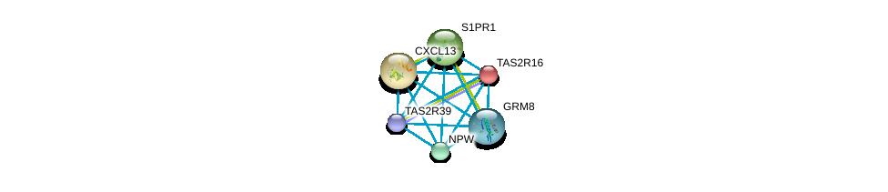 http://string-db.org/version_10/api/image/networkList?limit=0&targetmode=proteins&caller_identity=gene_cards&network_flavor=evidence&identifiers=9606.ENSP00000405095%0d%0a9606.ENSP00000330070%0d%0a9606.ENSP00000286758%0d%0a9606.ENSP00000249284%0d%0a9606.ENSP00000344173%0d%0a9606.ENSP00000305416%0d%0a